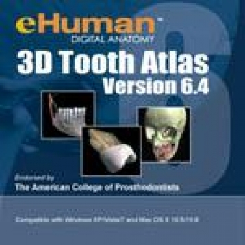 3D Interactive Tooth Atlas
